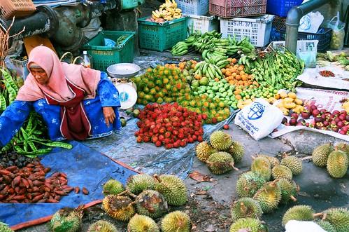 Fruits of Malaysia