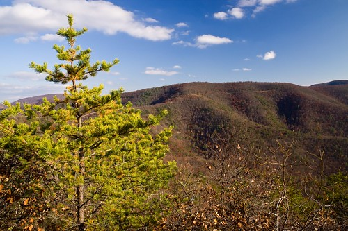 mountains virginia shenandoahnationalpark scenicviews