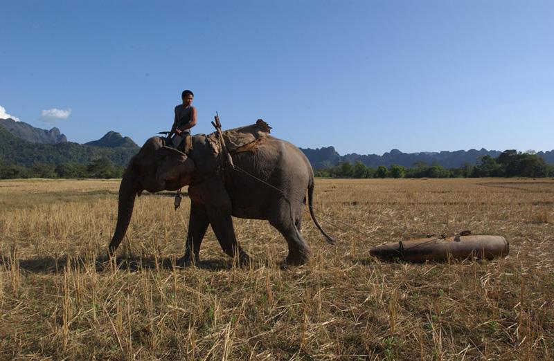 MAG Lao, 2004