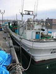 釧路川沿い散歩(冬の釧路・厚岸) Kushiro Trip (East Hokkaido)