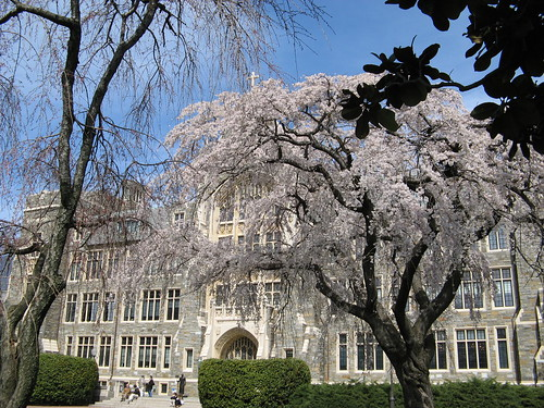 Spring at Georgetown Campus