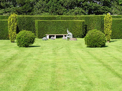 shrub, field, garden, grass, plant, artificial turf, green, landscaping, hedge, lawn, grassland,
