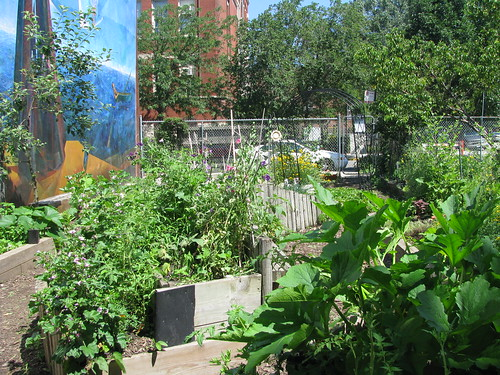 Xochiquetzal Peace Garden – NeighborSpace