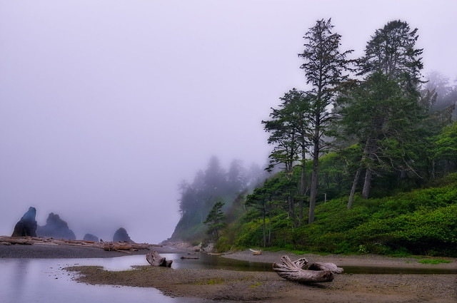Misting the Pacific Northwest Coast