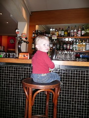 Our little barfly
