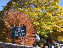 New Calvary Cemetery, Mattapan, MA