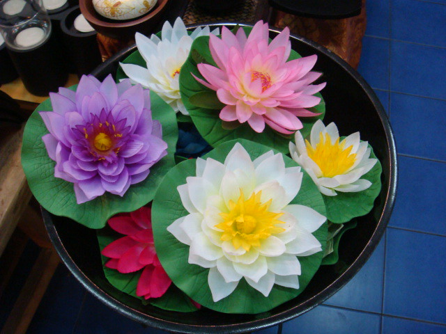 Lotus flowers soap carving flickr photo sharing