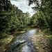 cache river