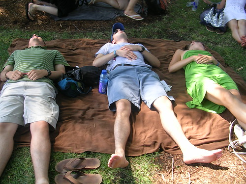 nap time at lollapalooza