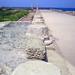 Roman pillars remains by Highway_Star_