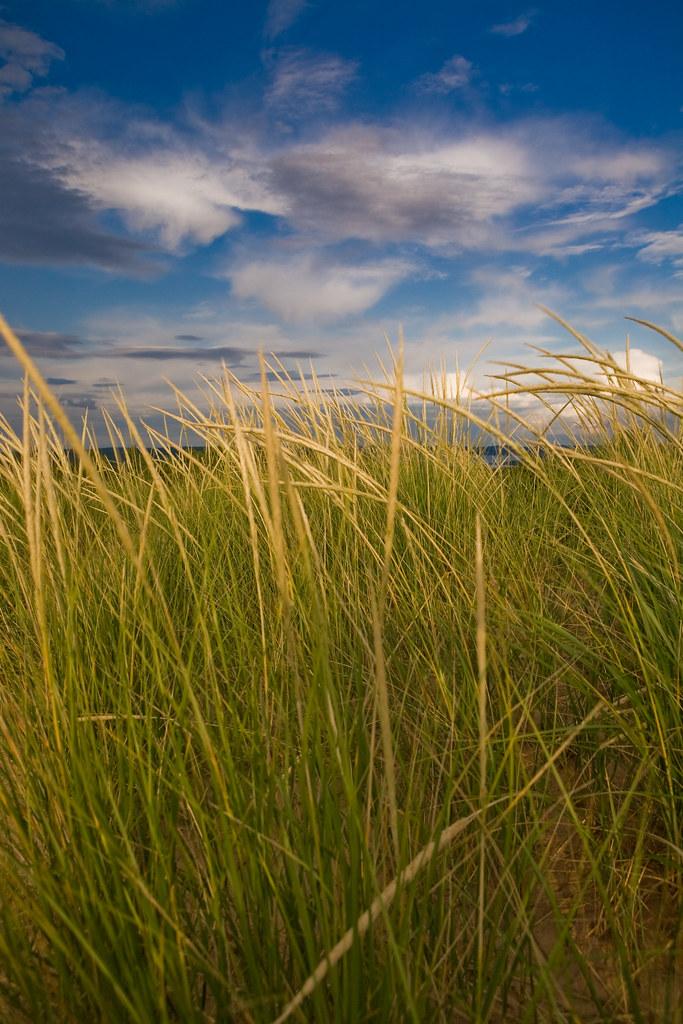 Earth, Wind, Sand & Sky
