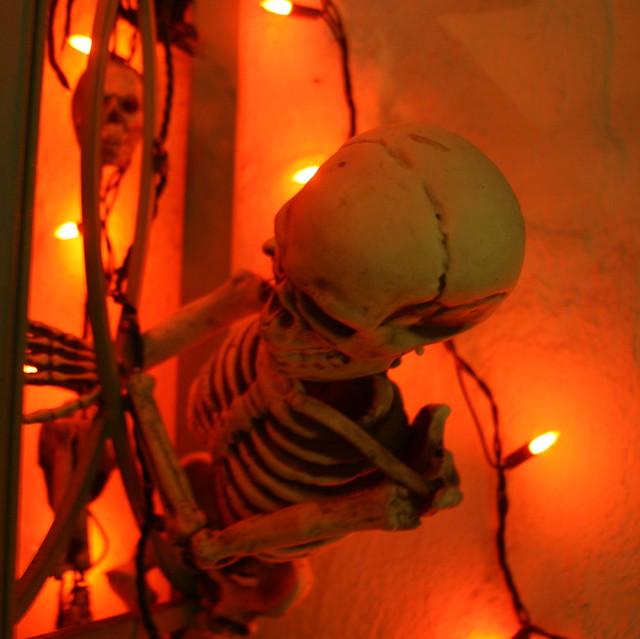 Skeletons Climbing