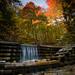 Iargo Natural Springs