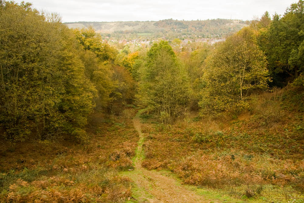 Reigate and a steep path from Reigate Park Hill
