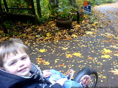 embarking on a jog to enjoy the autumn leaves   DSC0…
