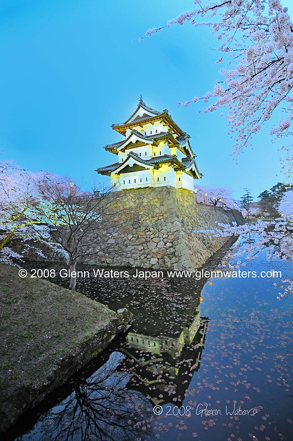 Sakura Castle Hirosaki.  © Glenn Waters.  Over 3,000 visits to this photo.  Thank you
