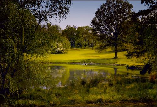 landscape pond springtime washingtonvirginia blueridgefoothills anidyllicplace