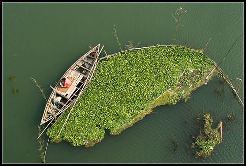 Perseverance [..Manikganj, Bangladesh..]