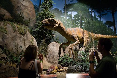 Morbid Anatomy The Creation Museum Petersburg Kentucky