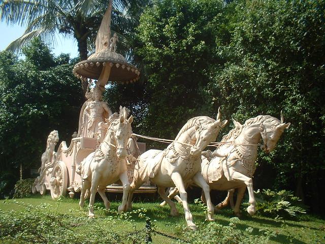 Common names of Arjuna