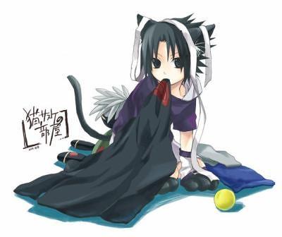 2945818785_d2b2050c18.jpg  Sasuke As A Cat