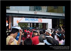 The NewPaper Big Walk 2008