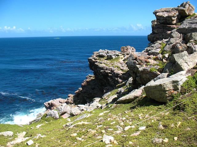 Rock dassie habitat flickr photo sharing for Forum habitat plus