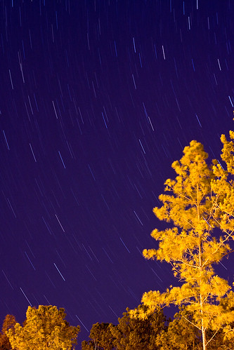 Star Trails | by clay.wells