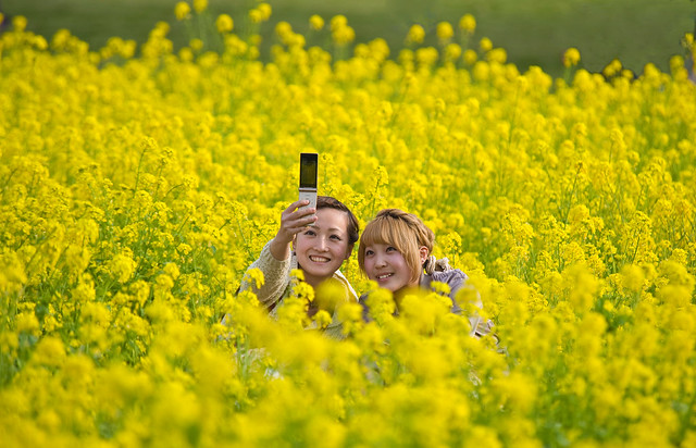 Cell Phone Portrait With Spring Flowers
