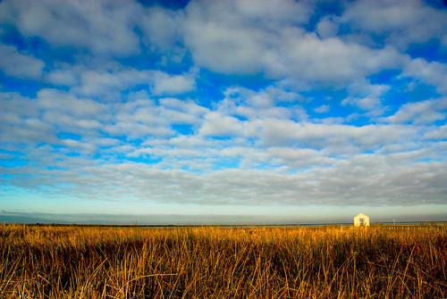 Cotton Ball Clouds Over Alviso