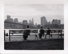Polaroid 664