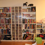 IKEA Bookcases (now with stuff!)