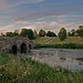 Oxford Bridge, Stowe, Bucks, England. Explore #128 by Ian.L