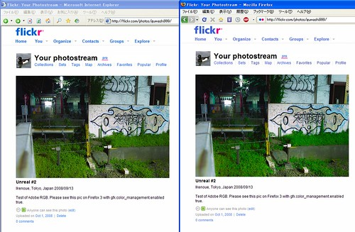 Adobe RGB image on IE6 and Firefox3