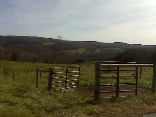 Pasture gate...