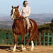 El Paraigua 2006 12 16i17 Les Gavarres