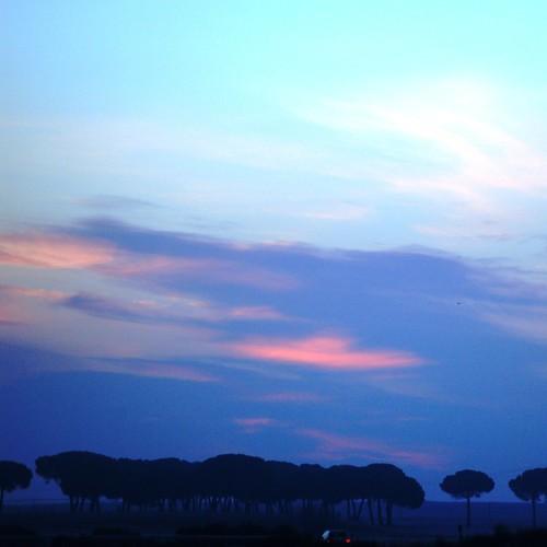 road morning pink sky mañana car sunrise nikon carretera horizon rosa valladolid explore amanecer pines coche cielo pinos tomorrow insomnia insomnio esperanza horizonte lcl amanecequenoespoco hopeness villaester atleastmorninghasbroken loretocantero