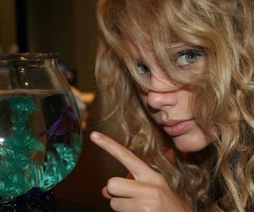 Taylor swift and a fish flickr photo sharing for Taylor fish farm