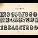 Examples of Numerals by Depression Press