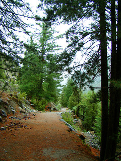 Hiking Track from Tato Village to Fairy Meadows