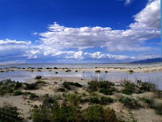 White Sands Flash Flood