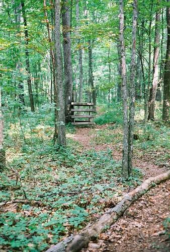 fence trail blaze appalachiantrail trail:name=appalachiantrail trail:mile=546