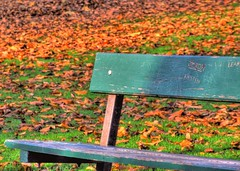 The Bench HDR