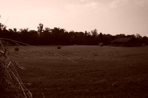 sepia farm hay bale kingstontn