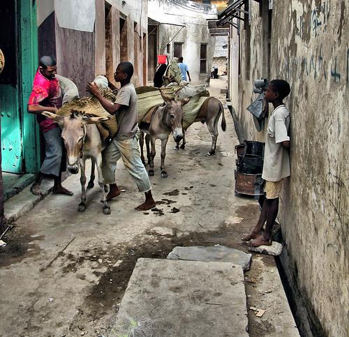 Lamu Street, East Africa by sobloodywhat