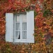 Autumn in Sauternes