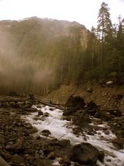 a river runs through fog