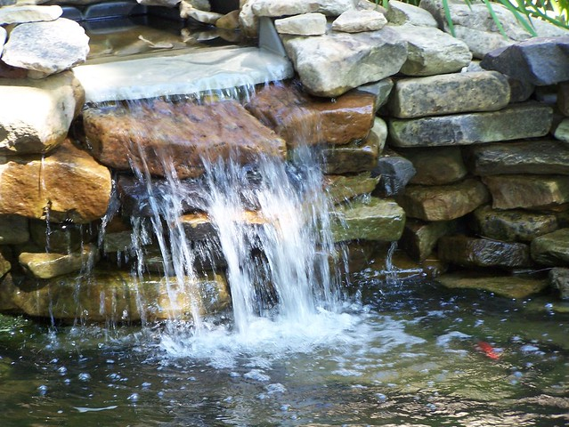 Artificial pond waterfall flickr photo sharing for Artificial pond water
