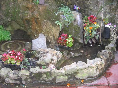 White spring, Glastonbury by jackiesjottings
