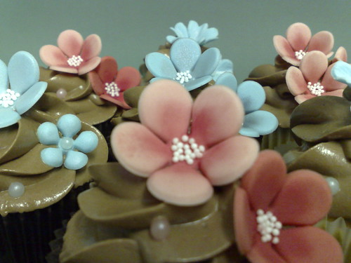Pinks & Blue Cuppies